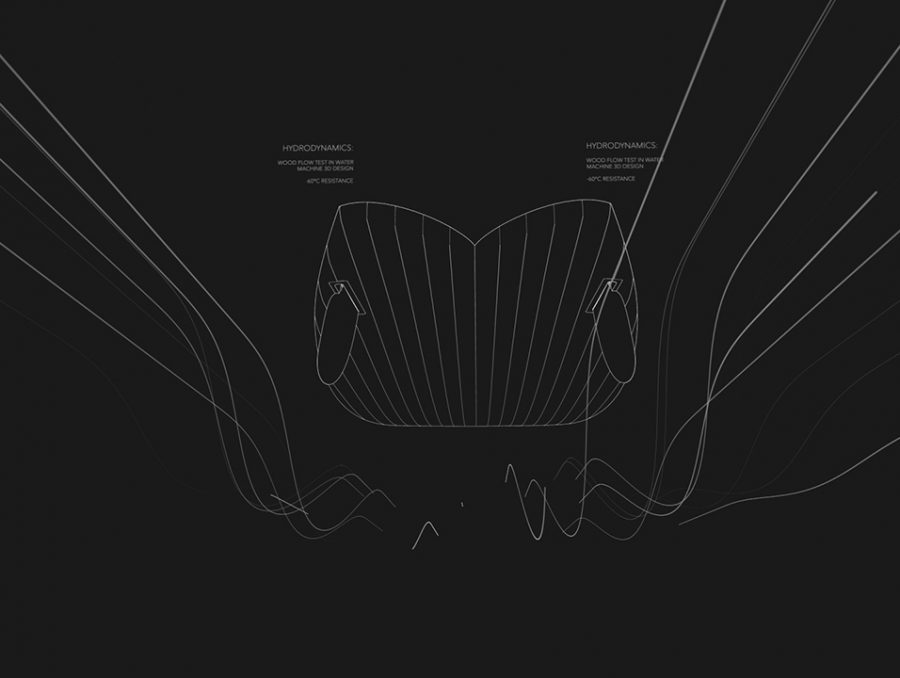 Natural-Goods_racoon_motiongraphics_10