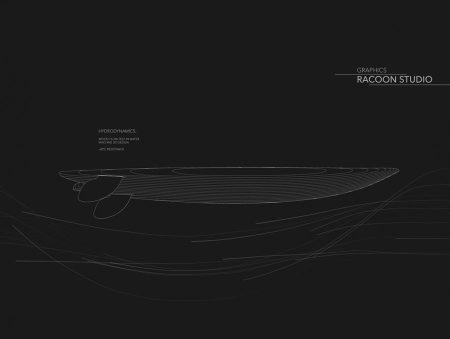 Natural-Goods_racoon_motiongraphics_9