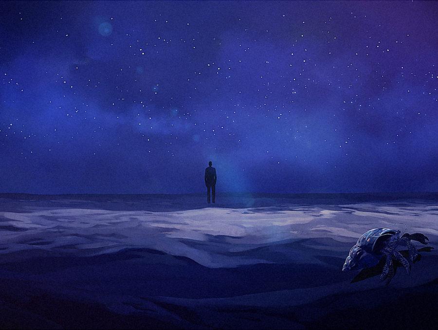 constellation_opening_racoonstudio_cosimomiorelli_animation_10