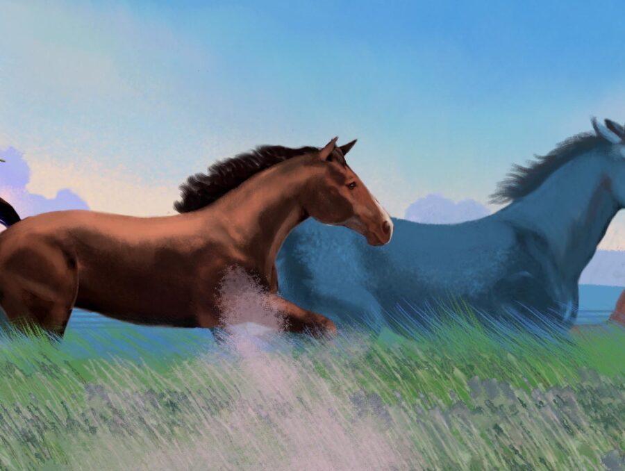 little_feat_animation_illustration_daltan_olsten_racoon_1